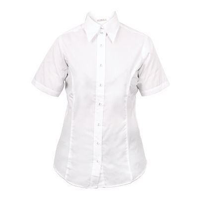 Ladies Business Short Sleeve Shirt