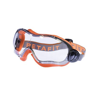 Eiger Safety Goggle