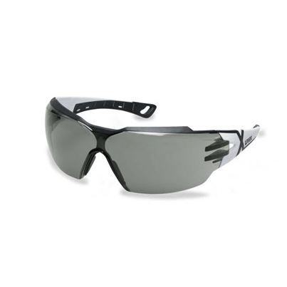 Uvex Pheos CX2 Safety Specs K&N Rated Grey Lens