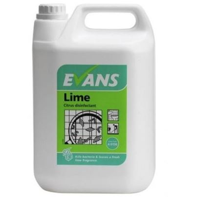 Lime Citrus Disinfectant (X2)