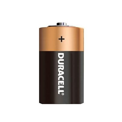D Batteries (X2) Non-Rechargeable
